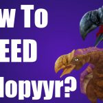 War Dragons How To Breed Dodopyyr?【Play Games】